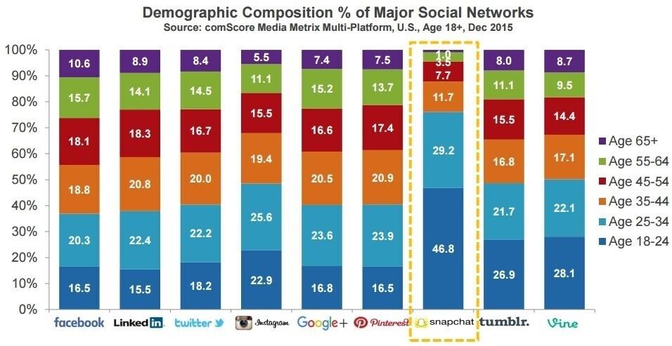 Hình 15: Cơ cấu % nhân khẩu học (demographics) về sử dụng mạng xã hội